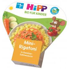 Hipp Bio Mini-Rigatoni in Gemüse-Sahnesauce ab 1+ 250G