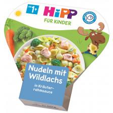 Hipp Nudeln mit Wildlachs in Kräuterrahmsauce ab 1+ 250G