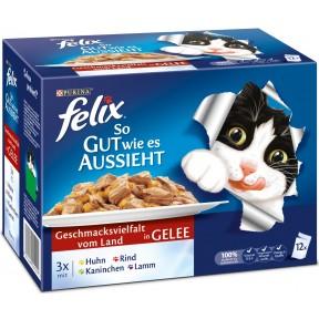 Felix Multipack so gut wie es aussieht Geschmacksvielfalt vom Land in Gelee