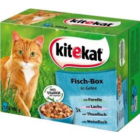 Kitekat Fisch-Box in Gelee Katzenfutter nass Multipack 12x 100 g