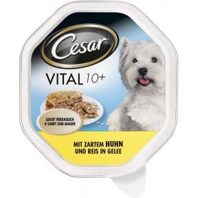 Cesar Vital 10+ mit Huhn und Reis in Gelee Hundefutter nass