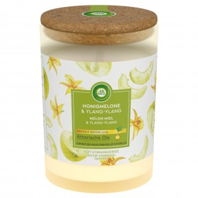 Airwick Duftkerze Honigmelone & Ylang-Ylang 1 Stk