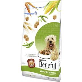 Beneful Wohlfühlgewicht Trockenfutter für Hunde