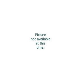 Aeroxon Fenster Fliegengitter Anthrazit