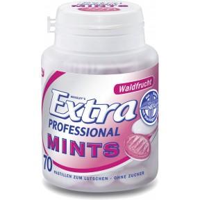 Wrigleys Extra Professional Mints Waldfrucht 70 Stück